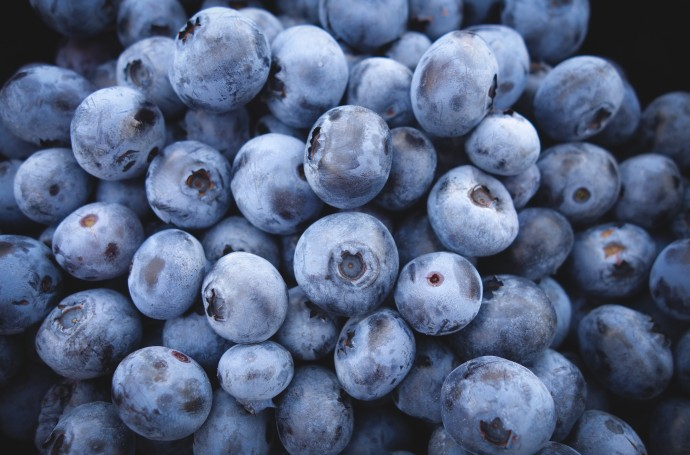 blueberries Arteasan